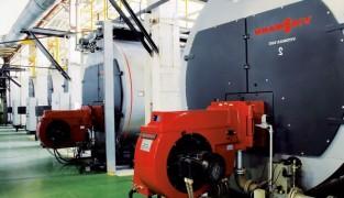 Использование бытовых газовых котлов промышленного назначения